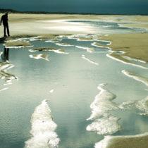 ¿Sabías que la playa de Doñana es la más larga de España?