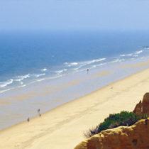 La magia de las playas vírgenes de Doñana