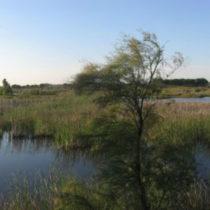 4 lugares de Huelva que debes visitar