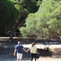 El corazón verde de Doñana sigue latiendo