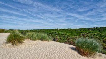 Su naturaleza, la gran presentación de Huelva en FITUR